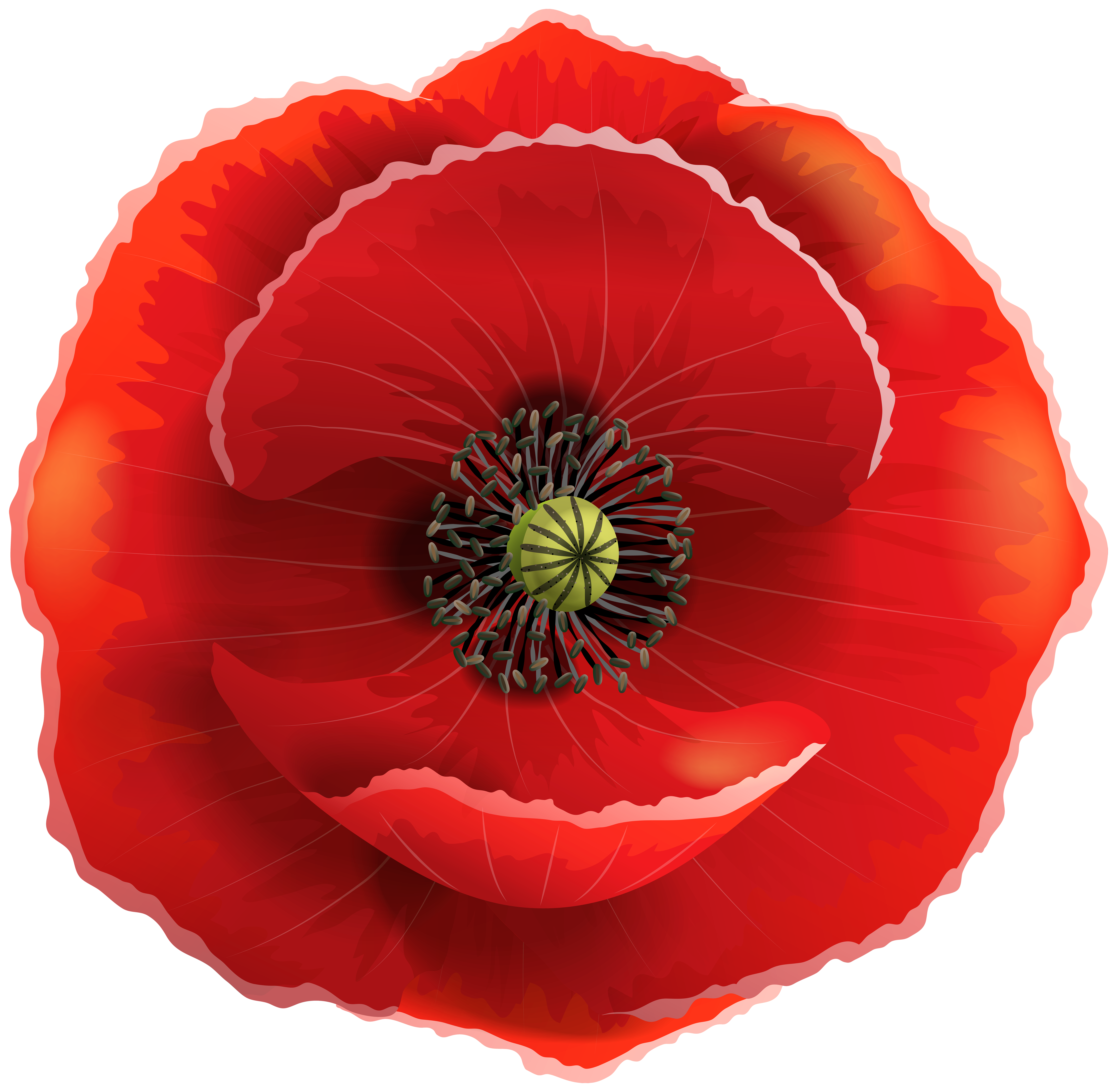 Poppy flower clipart royalty free library Poppy Transparent PNG Clip Art Image | Gallery Yopriceville - High ... royalty free library