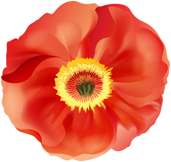 Poppy flower clipart svg royalty free Poppy PNG Clip Art Image | Gallery Yopriceville - High-Quality ... svg royalty free