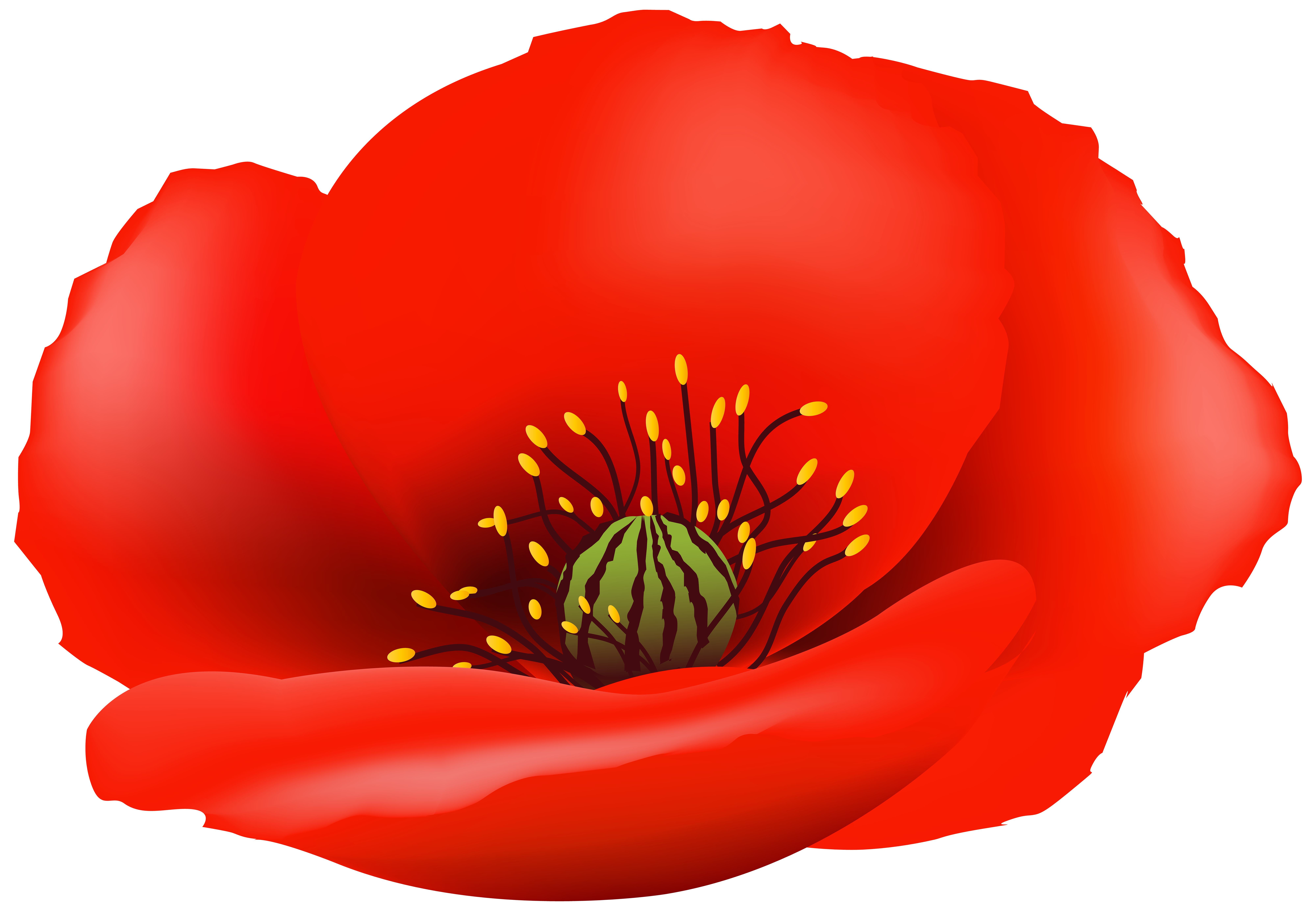 Poppy flower clipart png freeuse library Poppy Flower PNG Clip Art Image | Gallery Yopriceville - High ... png freeuse library