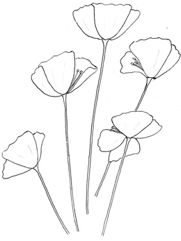 Poppy outline clipart picture free stock California Poppy Sketch at PaintingValley.com | Explore ... picture free stock