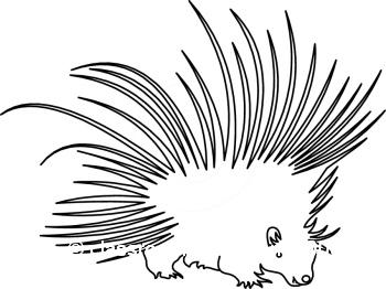 Porcuppine clipart clip art free download Porcupine Clip Art Free | Clipart Panda - Free Clipart Images clip art free download
