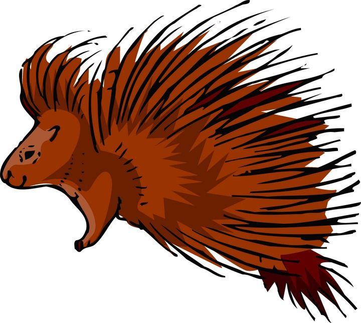 Porcuppine clipart vector transparent Porcupine Clipart | Quotes to remember | Clip art, Xmas ... vector transparent