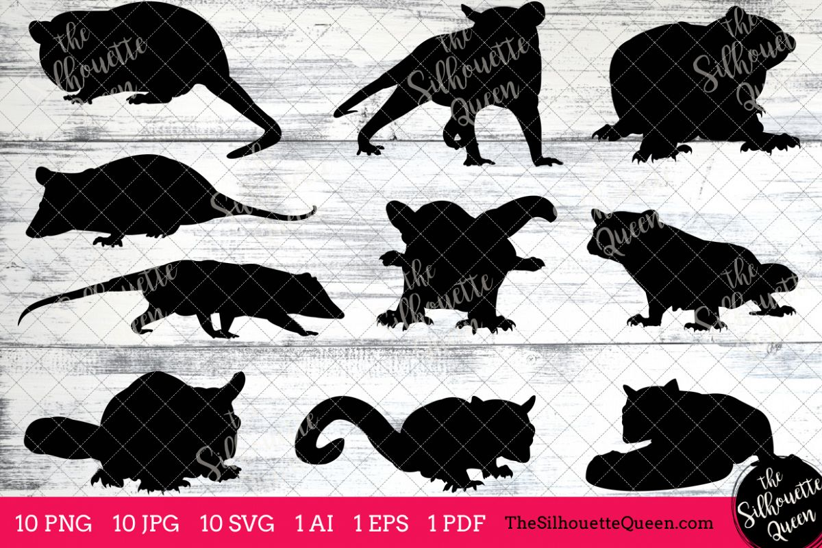 Possun clipart clip art transparent stock Possum Silhouette Clipart Clip Art(AI, EPS, SVGs, JPGs, PNGs, PDF), Possum  Clip Art Clipart Vectors - Commercial & Personal Use clip art transparent stock