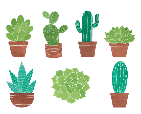 Potted cactus clipart vector library stock Cactus Clipart Set Clip Art Of Cacti Cactuses Transparent ... vector library stock