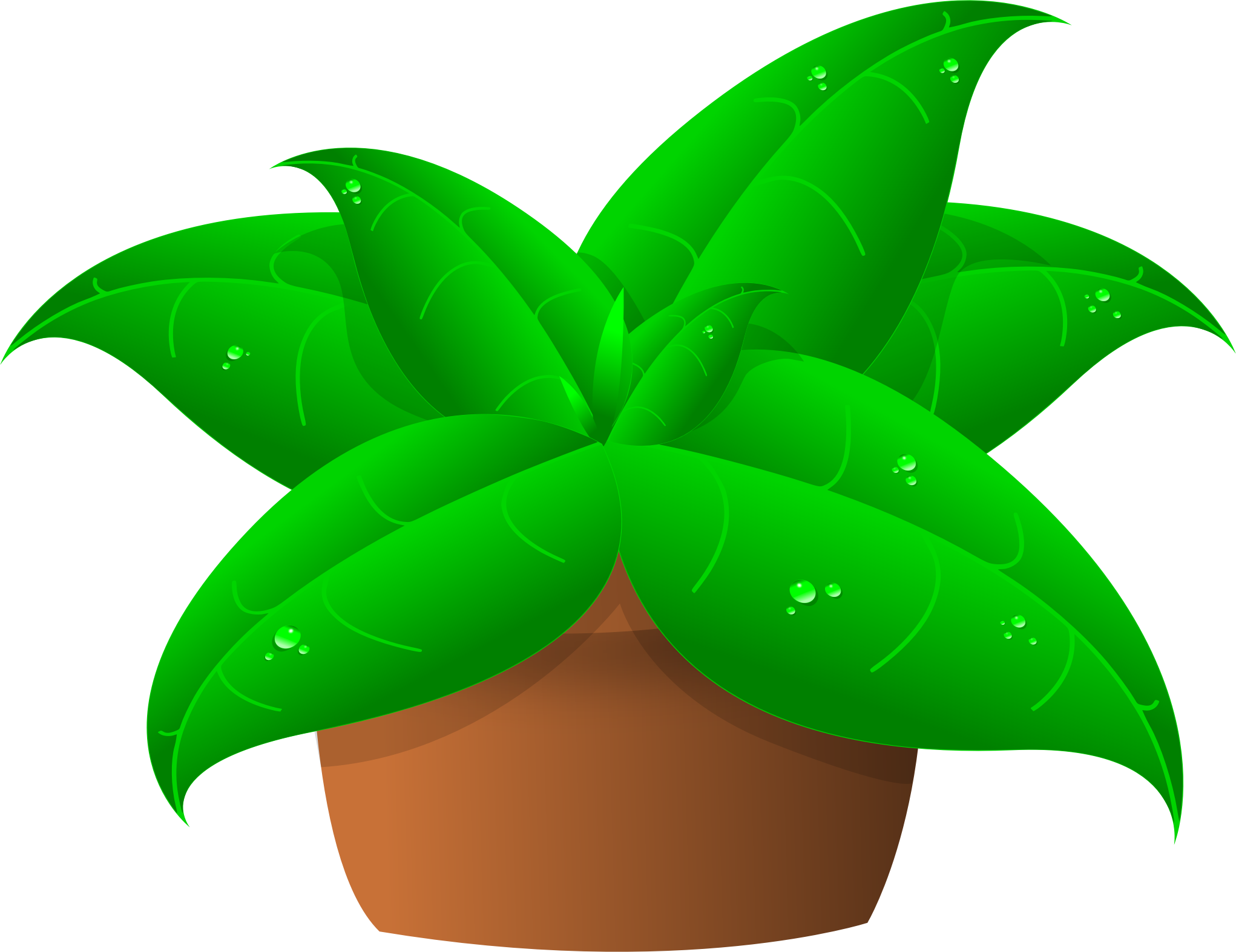 Potted tree clipart clip library library Potted plant clipart - crazywidow.info clip library library