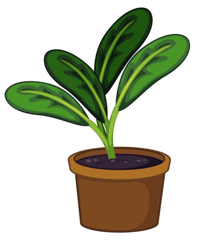 Potted tree clipart graphic free download Pin by Andrea Tan on ✿° my garden valley ° ✿ | Pinterest | Plants ... graphic free download