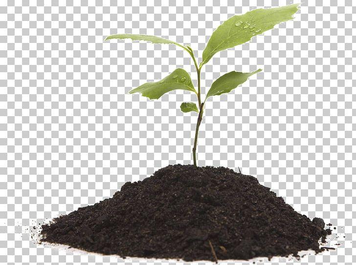 Potting soil clipart black and white stock Compost Plants Fertilisers Potting Soil PNG, Clipart ... black and white stock