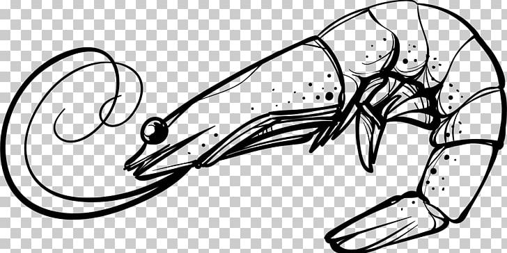Prawn clipart black and white image free library Shrimp Cartoon PNG, Clipart, Artwork, Black And White ... image free library