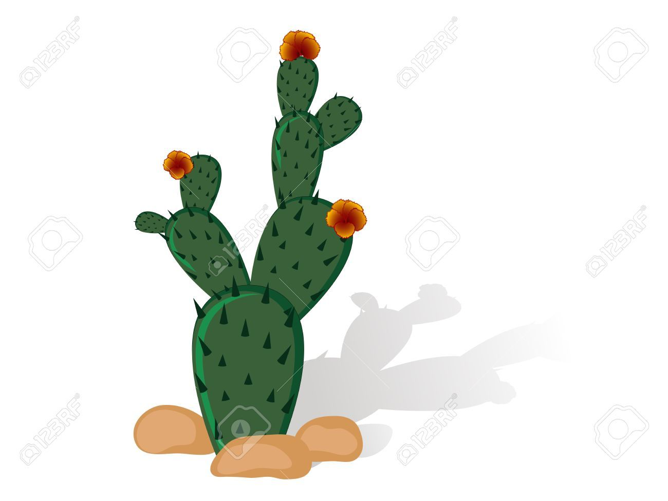 Prickly pear clipart graphic stock Prickly pear cactus clipart 4 » Clipart Portal graphic stock