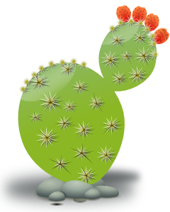 Prickly pear clipart picture library stock Cactus Clip Art | art | Cactus, Cactus illustration, Cactus ... picture library stock