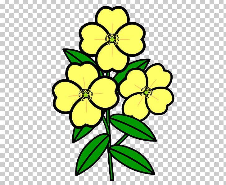 Primrose flower clipart vector library download Floral Design White Evening Primrose Flower Plant PNG ... vector library download