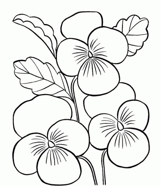 Printable images of flowers svg transparent flower Page Printable Coloring Sheets | Flower Coloring Pages For ... svg transparent