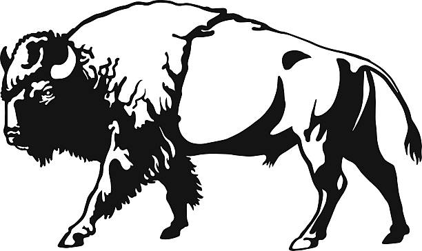 Profile of buffalo blackk and white clipart png stock Buffalo clipart - 27 transparent clip arts, images and ... png stock