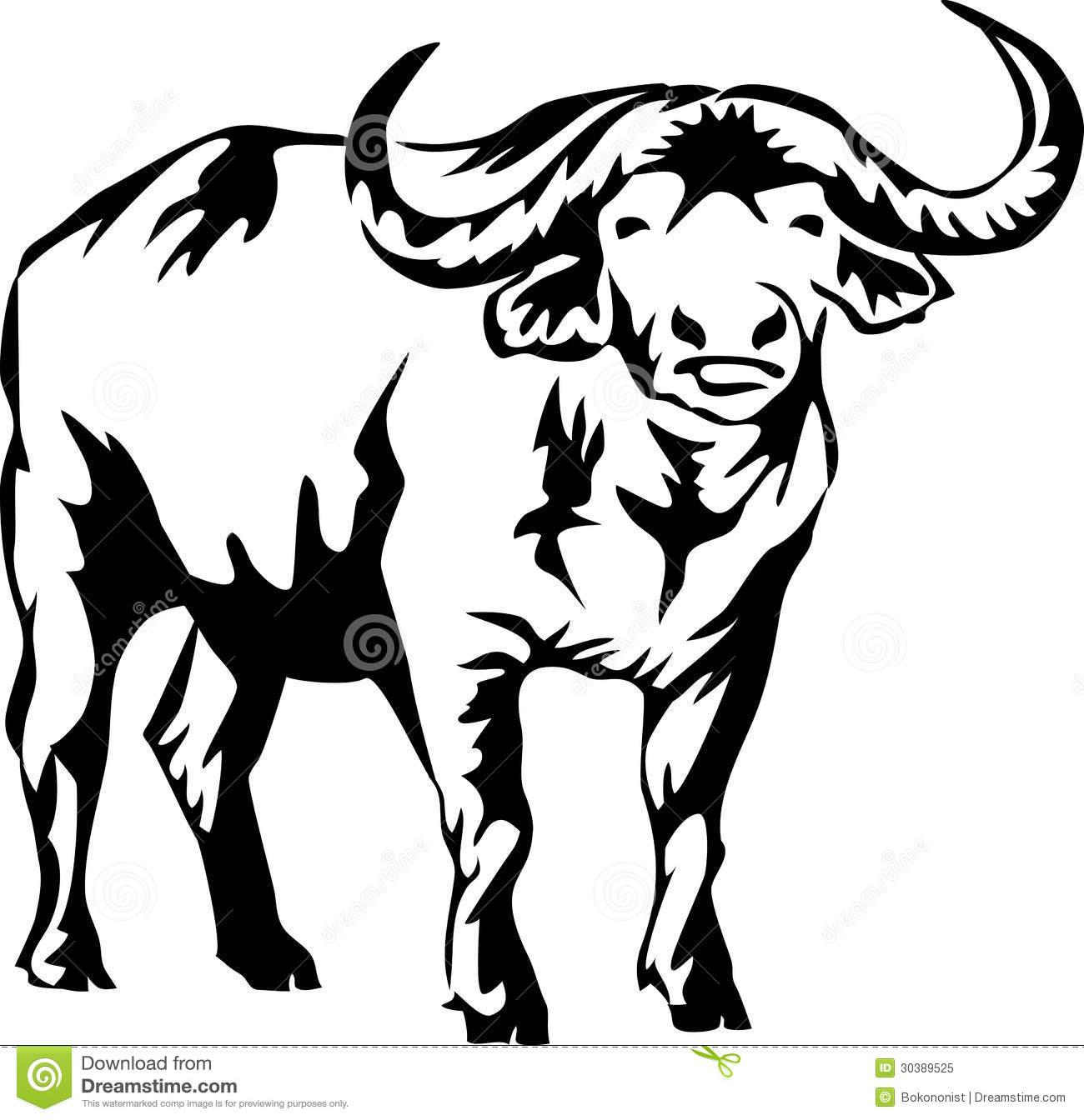 Profile of buffalo blackk and white clipart clip royalty free library Buffalo Clipart Free   Free download best Buffalo Clipart ... clip royalty free library