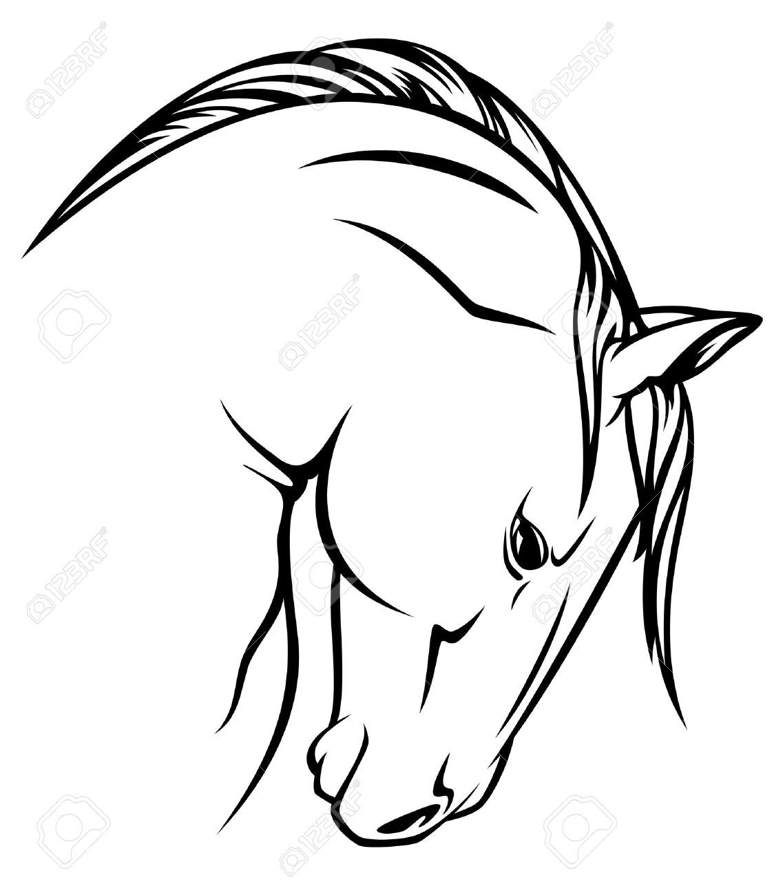 Profile of buffalo blackk and white clipart png transparent stock Buffalo Outline Drawing   Free download best Buffalo Outline ... png transparent stock