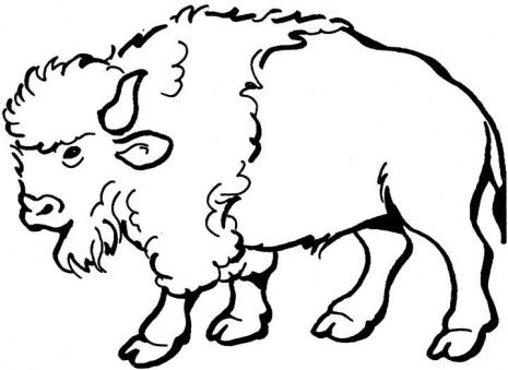 Profile of buffalo blackk and white clipart graphic library stock Free Buffalo Cliparts Black, Download Free Clip Art, Free ... graphic library stock