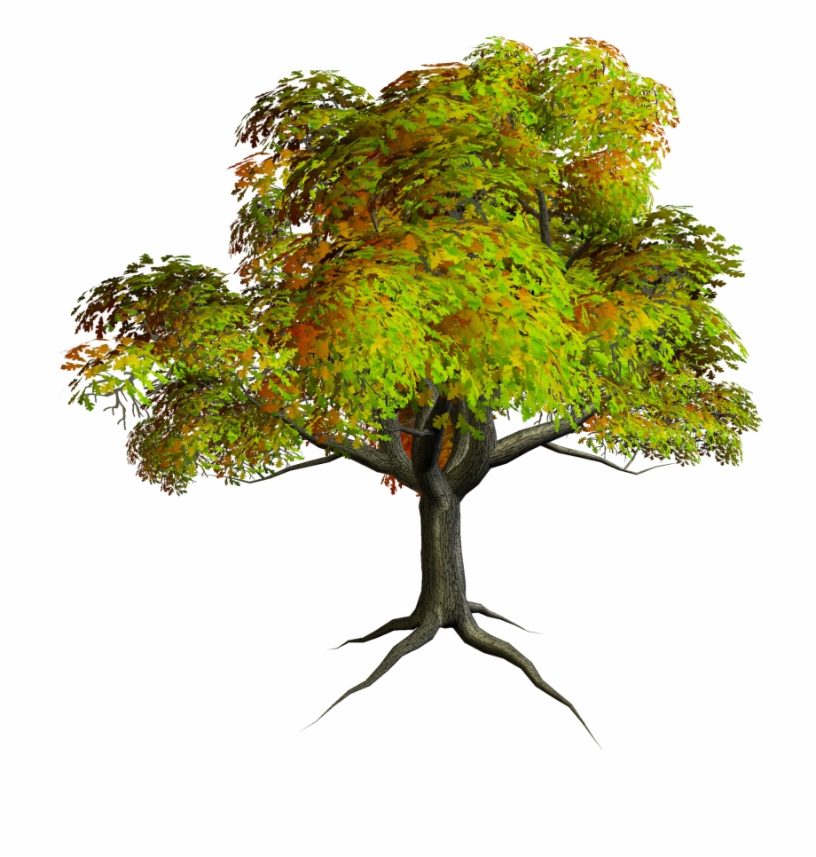 Project description clipart picture free library Autumn Png Tree Clipart - Project Description For Tree ... picture free library