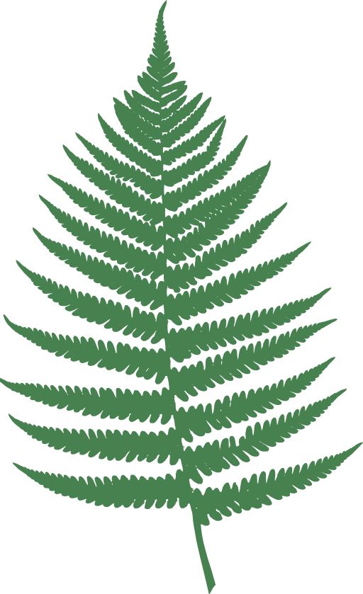 Public pictures domain free bronze fern on black backround clipart