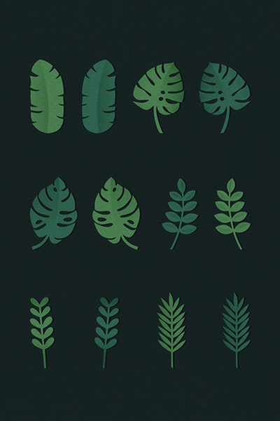 Public pictures domain free bronze fern on black backround clipart black and white stock Search Free Stock Photos, PSD Mockups & Vectors | rawpixel black and white stock