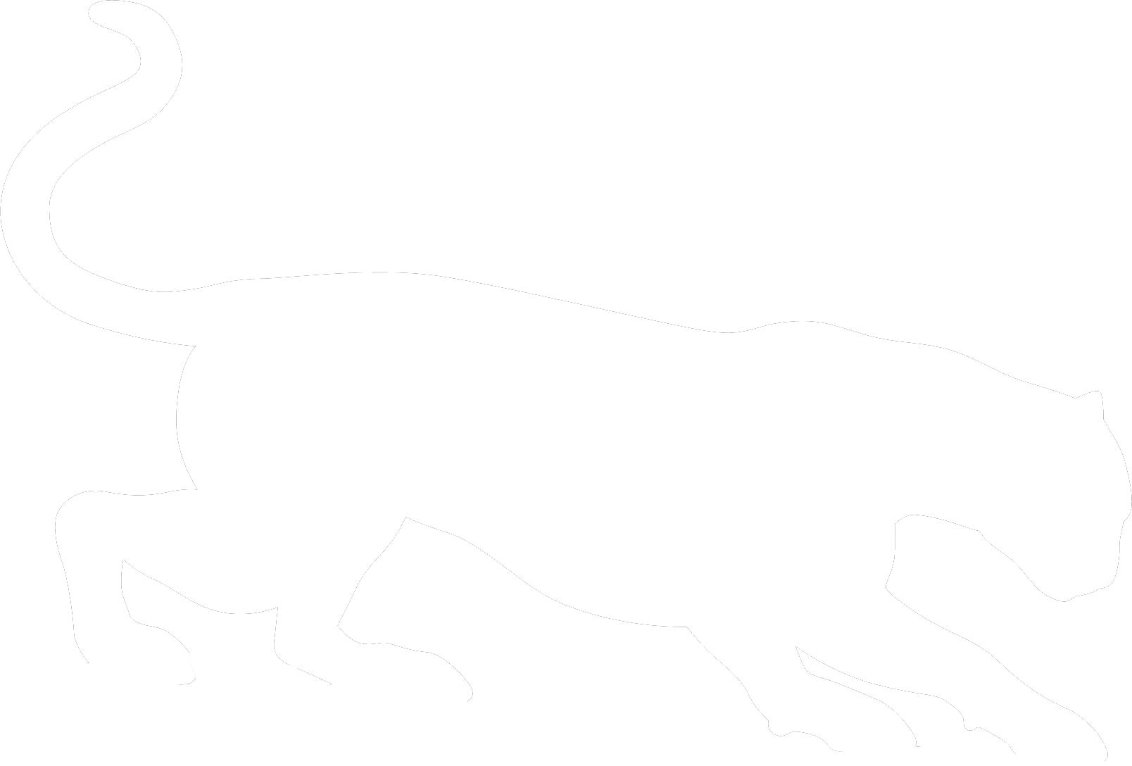 puma cat clipart