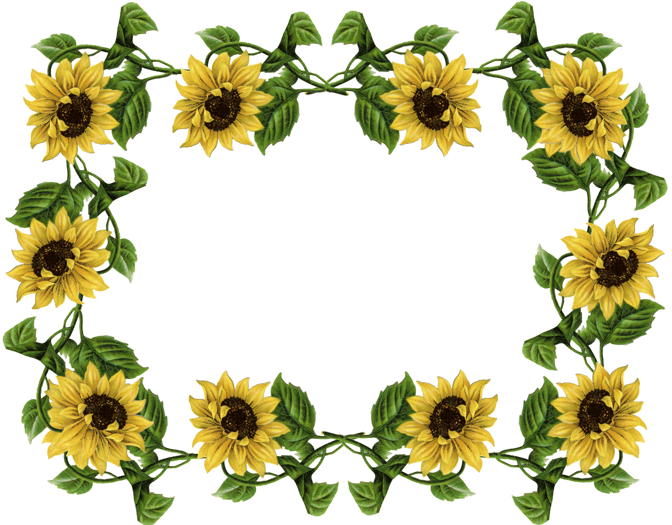 Seed and sun clipart vector free sunflower pics frame | sunflowers | Pinterest | Borders free ... vector free
