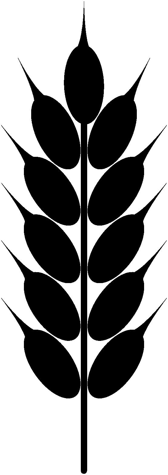 Pumpkin bread clipart black and white outline svg Clipart: Wheat Black And White | Farm and animals | Pinterest ... svg
