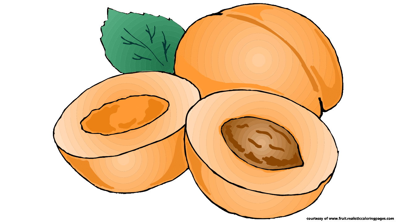 Pumpkin cake clipart clipart freeuse library Pumpkin Apricot Fruit Clip art - apricot 1280*720 transprent Png ... clipart freeuse library
