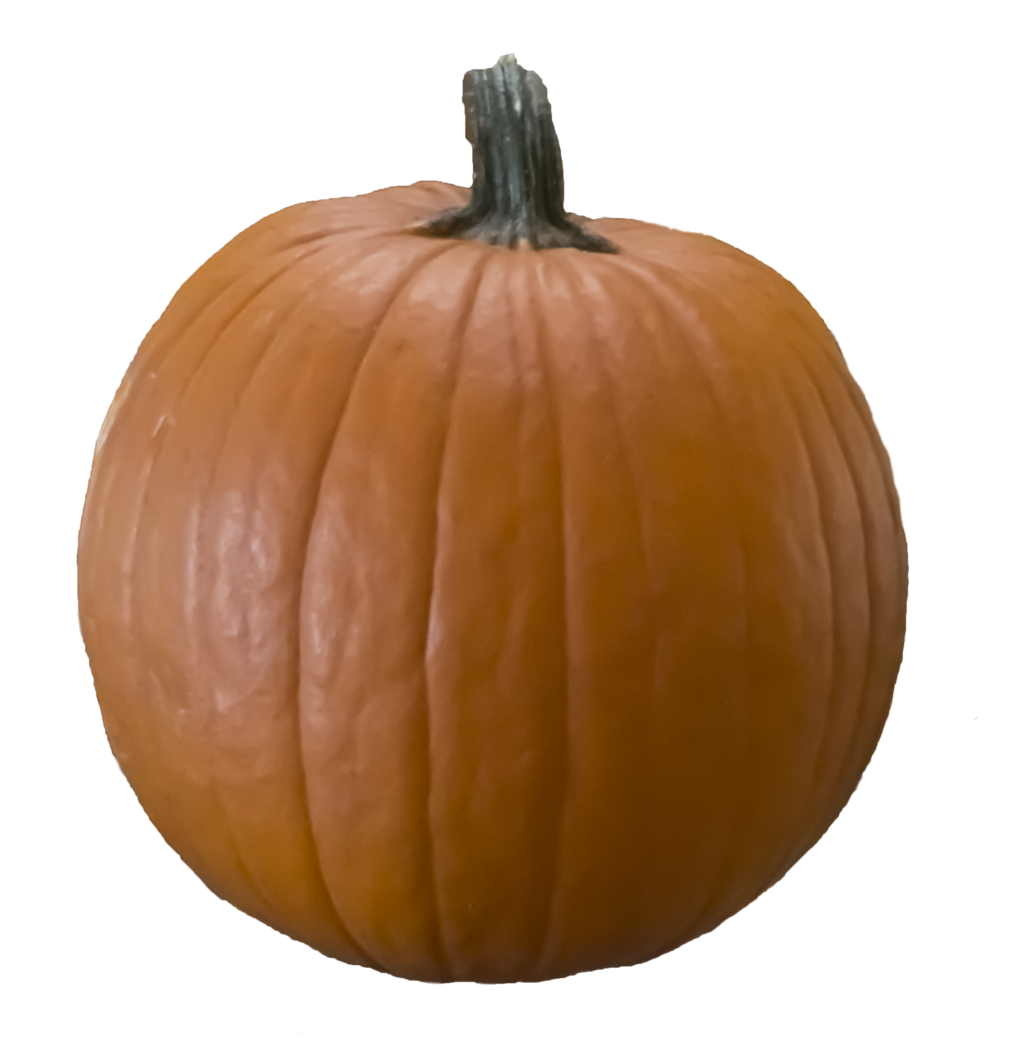 Pumpkin garden clipart png free library A cut out (png) pumpkin free to use by Kibblywibbly on DeviantArt free library