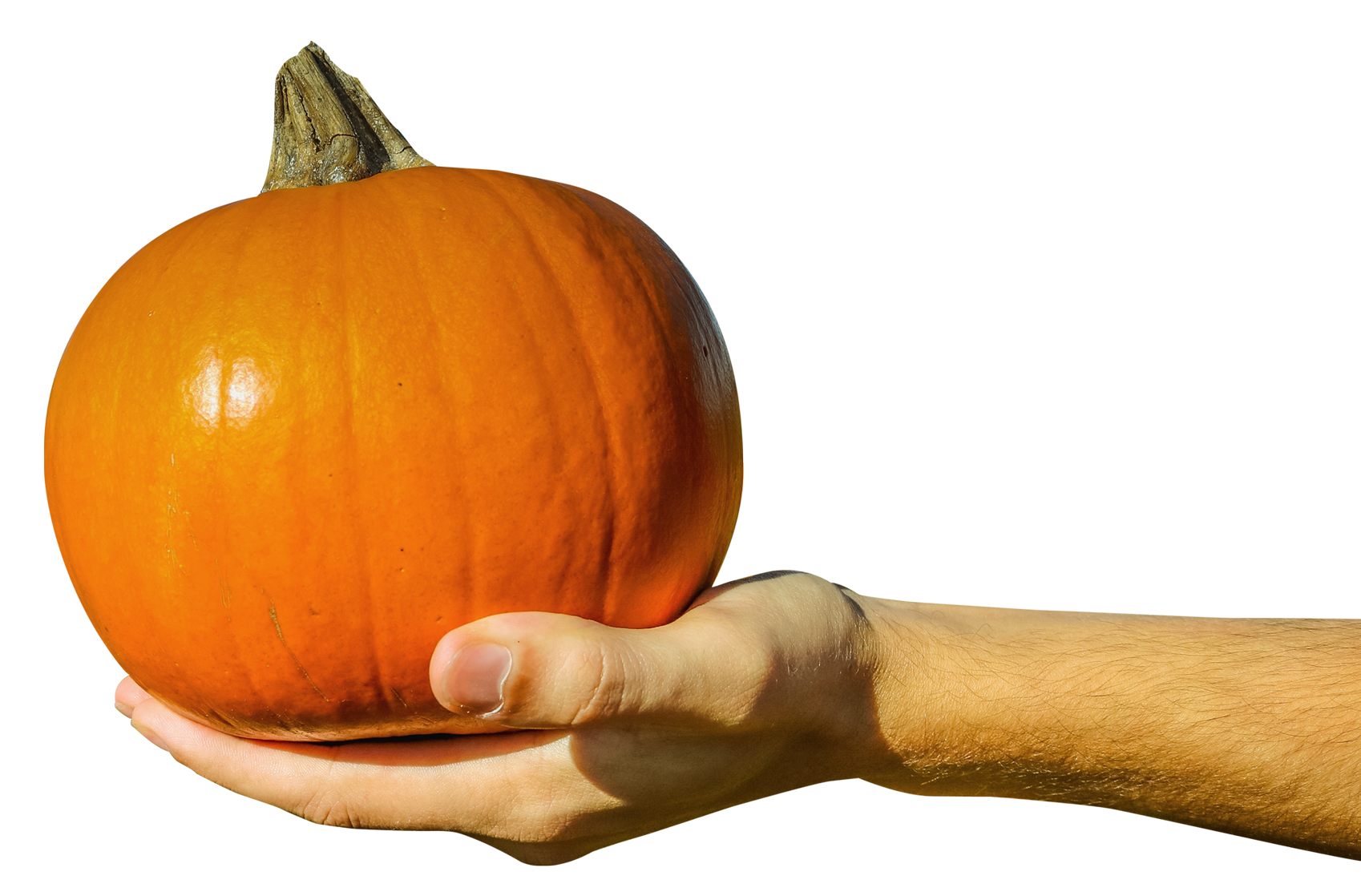 Pumpkin holding sign clipart clipart library Hand Holding Orange Pumpkin PNG Image - PurePNG | Free transparent ... clipart library