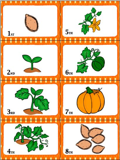 Pumpkin life cycle clipart jpg black and white download Life Cycle Of A Pumpkin Worksheet - Delibertad jpg black and white download