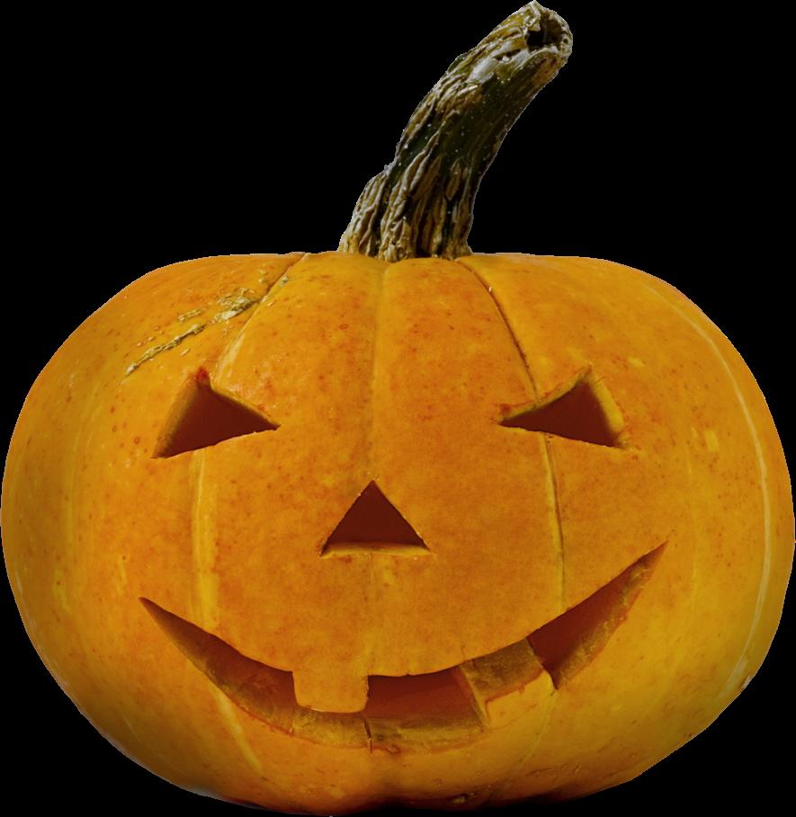 Pumpkin pickin clipart image freeuse stock Marfi-topia: October 2014 image freeuse stock