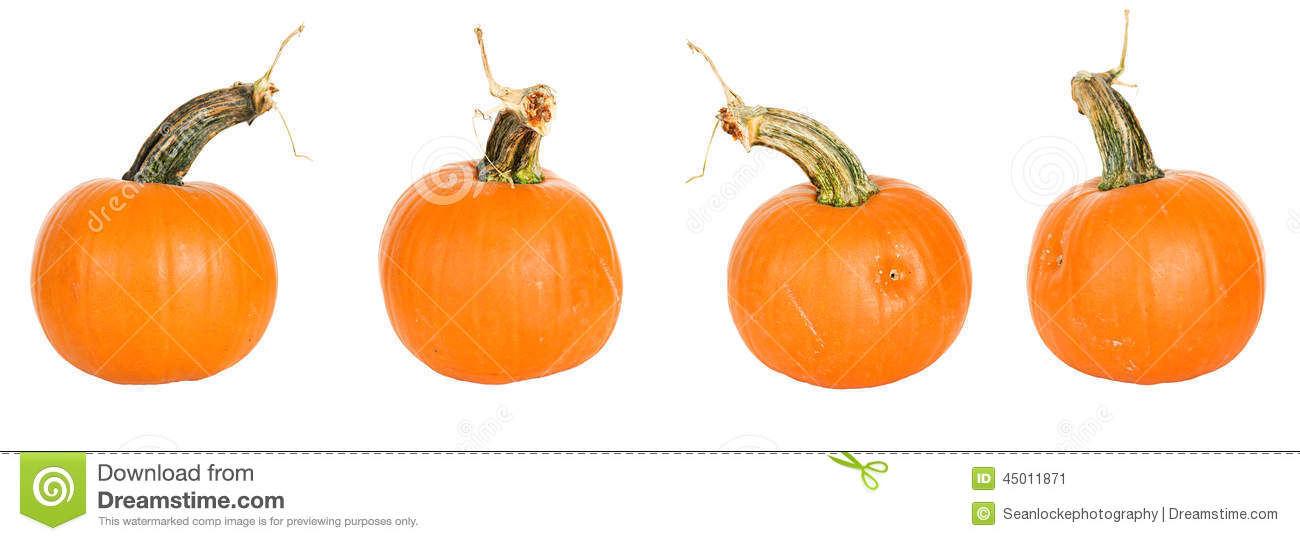 Pumpkin row clipart banner library download Pumpkins in a row clipart - ClipartFest banner library download