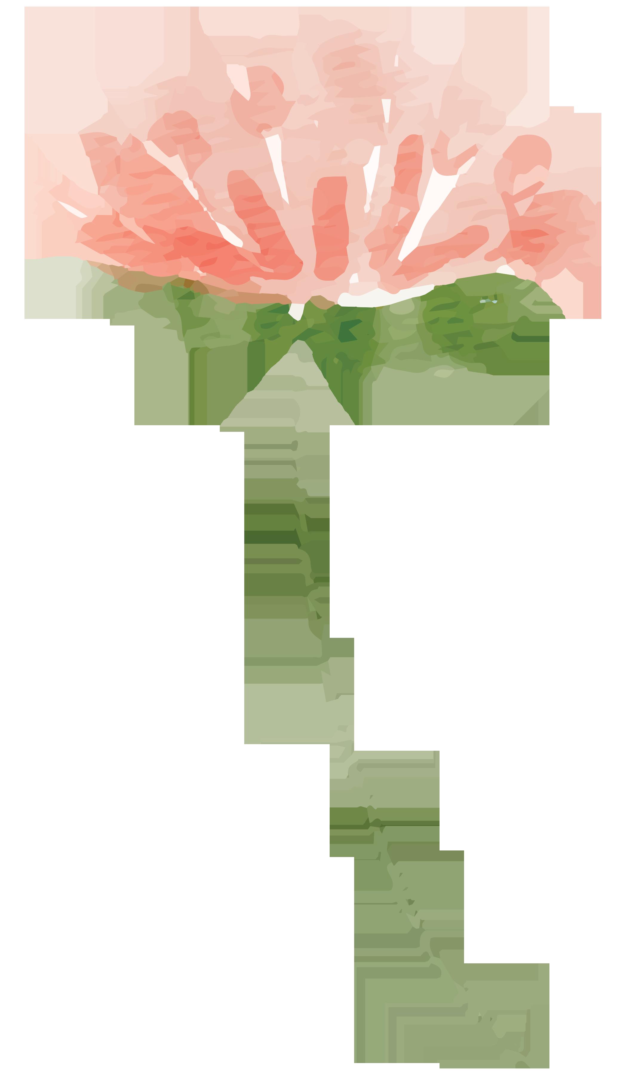 Pumpkin stem image clipart freeuse Peach Flower Clipart pumpkin flower - Free Clipart on ... freeuse