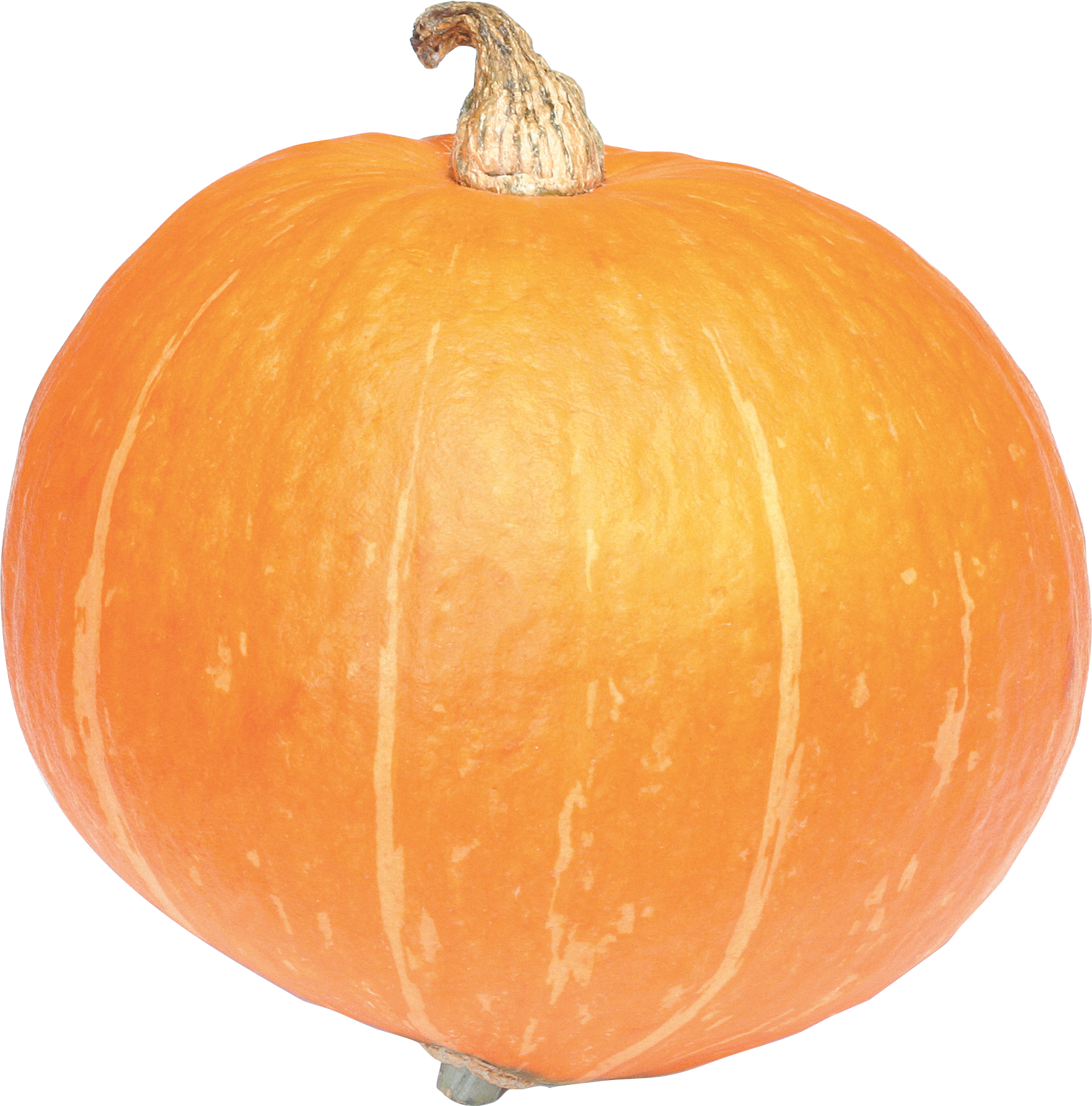 Pumpkin with cross clipart clip art black and white download Pumpkin PNG images free download clip art black and white download