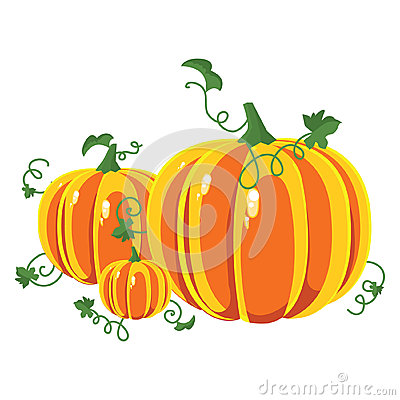 Pumpkins clipart of different sizes vector transparent library Vector Pumpkins Three Pumpkins Of Different Sizes Royalty Free ... vector transparent library