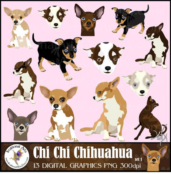 Puppy clipart 1 color jpg Chi Chi Chihuahua set 1 - 14 gorgeous full color dog clipart ... jpg