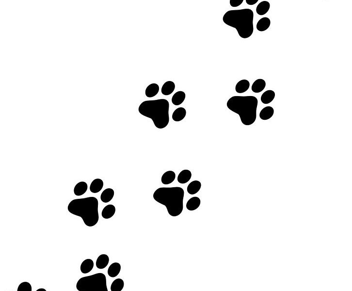 Puppy paws clipart free stock Puppy Paw Print Clipart | Free download best Puppy Paw Print ... free stock