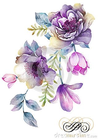 Purple and white carnations water painting clipart graphic library Watercolor illustration flower in simple background | Art ... graphic library