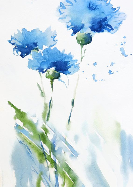Purple and white carnations water painting clipart image library download Cornflower Art Print Watercolor Painting, Blue Flower Art ... image library download