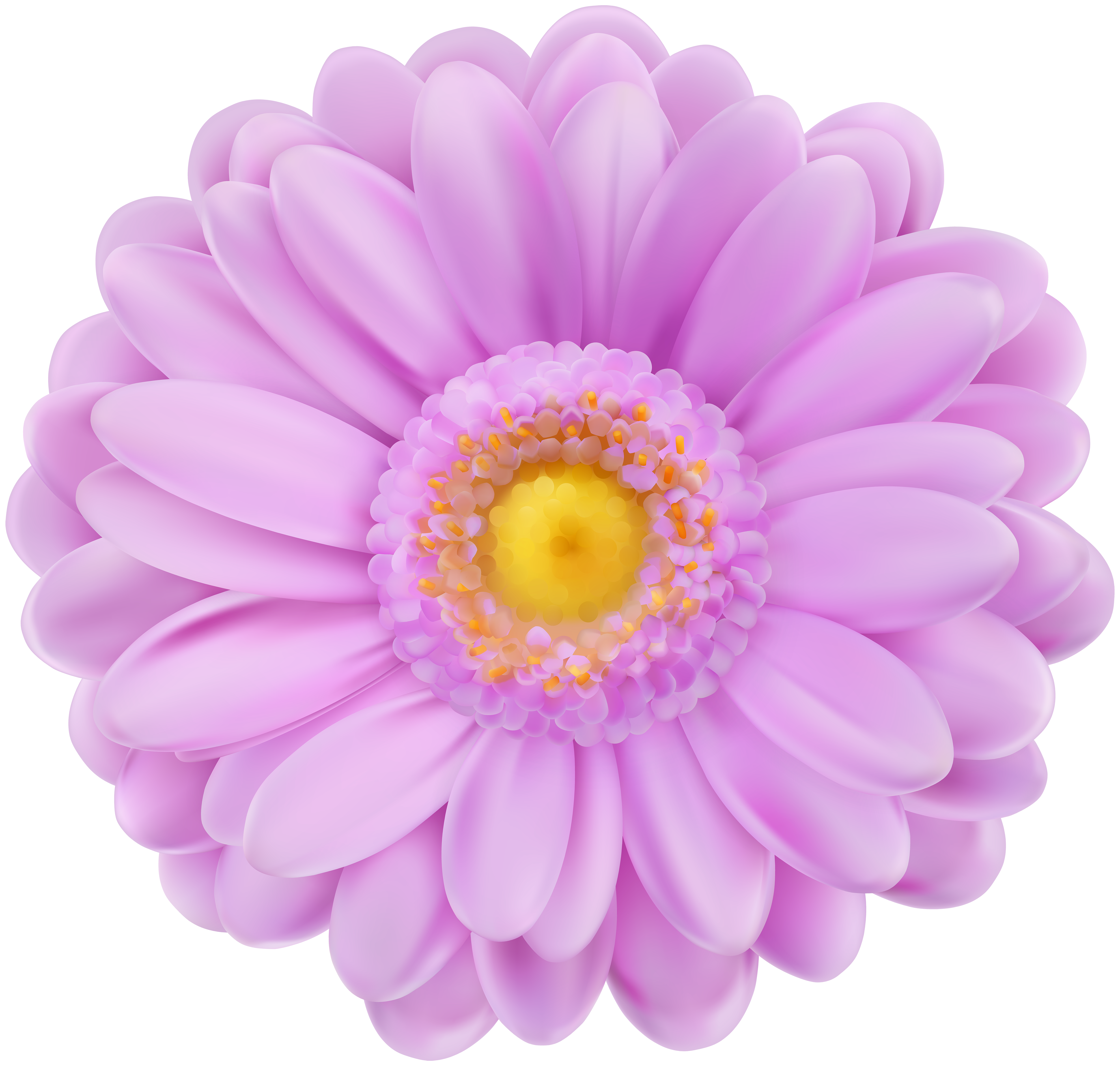 Purple daisy flower clipart banner black and white download Soft Purple Flower Transparent PNG Clip Art | Gallery Yopriceville ... banner black and white download