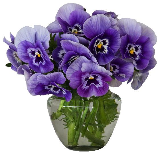 Purple flower bouquet clipart clipart black and white Violets Vase Bouquet Clipart   Gallery Yopriceville - High-Quality ... clipart black and white