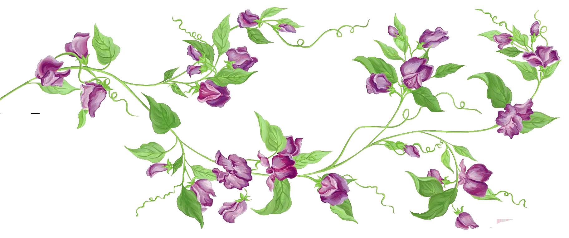 Purple flower vine clipart svg black and white download Purple Floral Decor PNG Transparent Clipart | Gallery Yopriceville ... svg black and white download