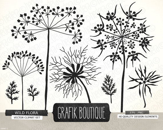Queen anns lace cliparts png stock Wild herbs flowers silhouette vector clip art, queen anne\'s ... png stock