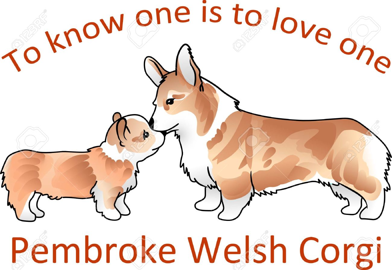 Queen of england cute clipart image black and white library You Will Love These Cute Corgis Just Like The Queen Of England ... image black and white library