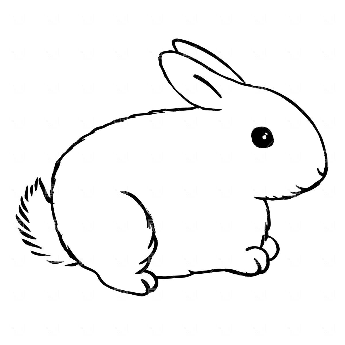 Black and white rabbit clipart 1 » Clipart Portal banner transparent download