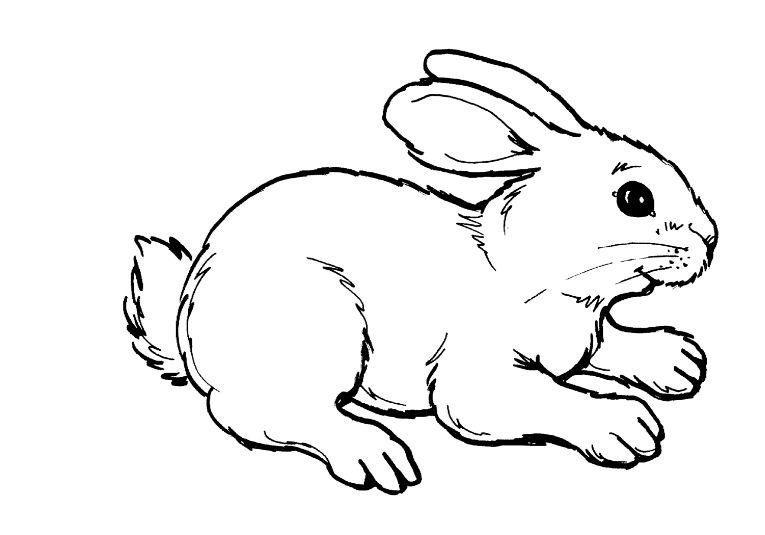 Rabbit clipart black and white image royalty free download Rabbit clipart black and white clipartxtras jpeg - ClipartPost image royalty free download