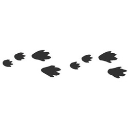 Free Bunny Footprints Cliparts, Download Free Clip Art, Free ... image black and white stock