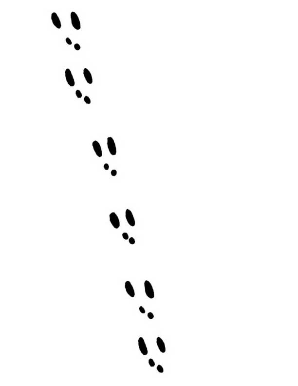 Free Bunny Footprints Cliparts, Download Free Clip Art, Free ... svg free