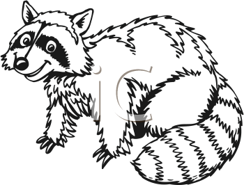 Free Raccoon Clipart Black And White, Download Free Clip Art ... image royalty free