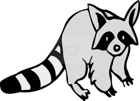 Raccoon Clip Art Black And White | Clipart Panda - Free ... clip transparent library